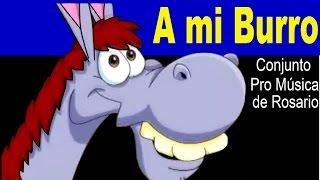 getlinkyoutube.com-A MI BURRO - Conjunto Pro Música de Rosario