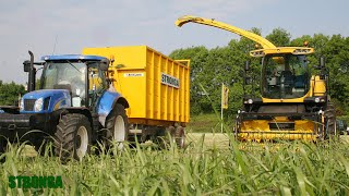 Stronga HookLoada 180 and hook lift truck - Efficient grass silage harvest