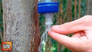 getlinkyoutube.com-3 ideas increíbles con botellas