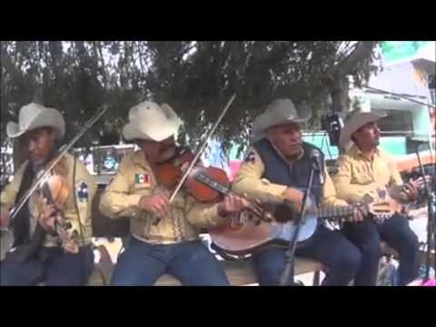 32 Festival de Huapango Arribeño Xichú