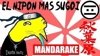 getlinkyoutube.com-Niño Otaku - 02 - El Nipon mas Sugoi (#NEGAS)