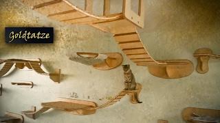 getlinkyoutube.com-🙀 Goldtatze © Katzenzimmer | Katzen Möbel aus Holz | Cat Tree Room