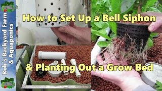 getlinkyoutube.com-How to set up a bell siphon & planting out a grow bed. Aquaponic Vlog 11,.
