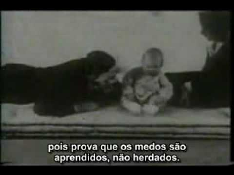 John Watson - Teoria Do Behaviorismo