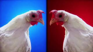 Techno Chicken Song Remix (1 Hour)