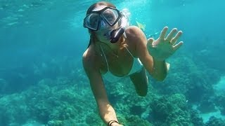 getlinkyoutube.com-GoPro HERO3+ Black: Snorkeling - Kona, Hawaii