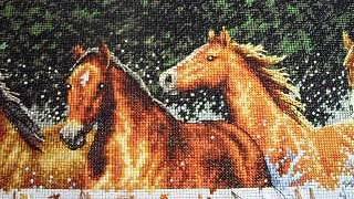 getlinkyoutube.com-Половина работы Бегущие лошади