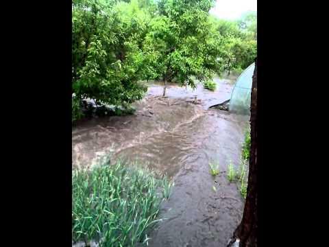Вот что творится на приусадебном участке жителя Калуги после дождя