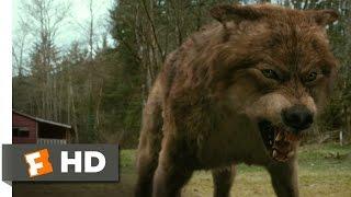getlinkyoutube.com-Twilight: New Moon (7/12) Movie CLIP - Jacob's Transformation (2009) HD