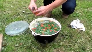 getlinkyoutube.com-Рецепт ухи на день рыбака