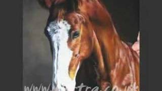 getlinkyoutube.com-Speed Painting - horse portrait in pastel (Billy)