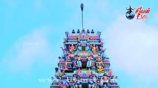 இணுவில் செகராஜ சேகரப் பிள்ளையார் கோவில் கொடியேற்றம் 17.04.2021