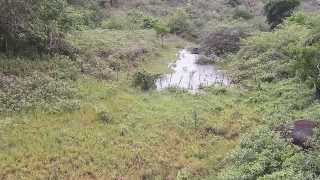 getlinkyoutube.com-Enchente repentina no Sertão da Bahia (22/12/2013) - Parte 1