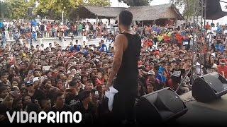 """getlinkyoutube.com-Papi Wilo - """"en vivo"""" Suegra y Amor de la calle"""