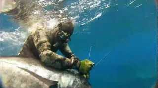 getlinkyoutube.com-Spearfishing Ulua on Oahu, Hawaii