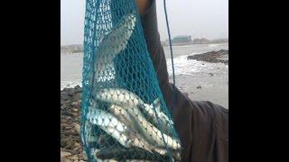 getlinkyoutube.com-Memancing ikan belanak dengan botol