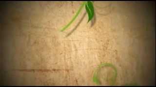 اجمل خلفيات موبايل فيديو اسلامية للمونتاج HD 13