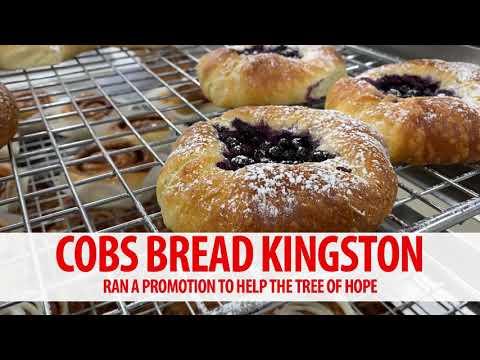 Cobs Bread Kingston - Tree of Hope