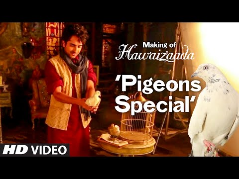 Making of Hawaizaada Pigeons Special