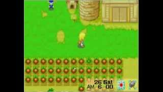 getlinkyoutube.com-Harvest Moon More Friends Of Mineral Town #34 Completing The Kitchen -Part 1 Seasoning Set