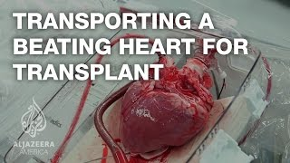 getlinkyoutube.com-Transporting a beating heart for transplant - TechKnow