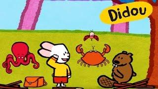 getlinkyoutube.com-Didou, dessine-moi un crabe, une pieuvre et un castor | Dessin animé pour les enfants