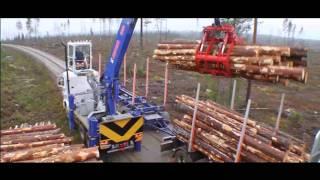 timberman separatlastare