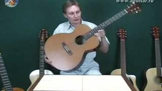 гитара, выбор гитары: виды гитар и свойства 1/2