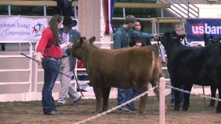 The Ride with Cord McCoy: National Western Stock Show 2014