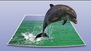 getlinkyoutube.com-Photoshop tutorial - Dolphin jumping out of the picture