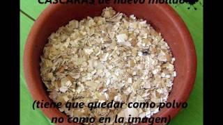 getlinkyoutube.com-FÁCIL Alimento para perros/gatos (croquetas y en pasta)