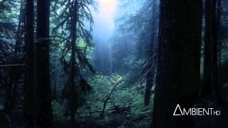 getlinkyoutube.com-Carbon Based Lifeforms - Interloper (Full Album)