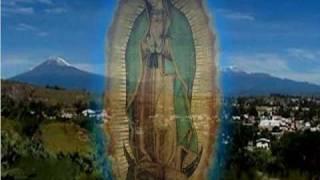 getlinkyoutube.com-La Virgen de Guadalupe y la profecía del Sol.