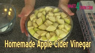 getlinkyoutube.com-Homemade Apple Cider Vinegar - Make Real, Healthy Apple Cider Vinegar at Home!!!