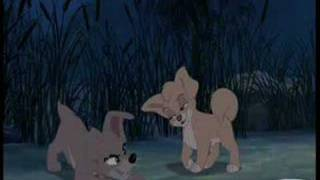 Lady And The Tramp I & II Music Video   Bella Notte