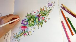 getlinkyoutube.com-Magical Jungle: Life On Happy Pond   Coloring With Colored Pencils