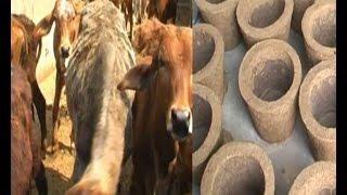स्वामी रामेश्वर दास गाय के गोबर से  दें रहें हैं कई लोगों को रोजगार
