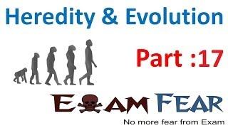 Biology Heredity & evolution part 17 (Evidence of evolution, fossils) CBSE class 10 X