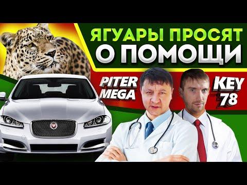 Где находится предохранитель бензонасоса у Jaguar S-Type