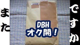 【DBH】オークションで落札したモノ