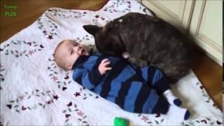 getlinkyoutube.com-Śmieszne dzieci i zwierzaki kwiecień 2015
