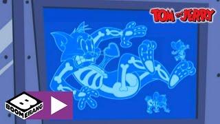 getlinkyoutube.com-Tom & Jerry | Luggage X-Ray | Boomerang UK