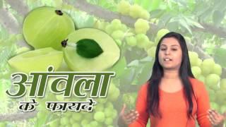 getlinkyoutube.com-Amla Ke Fayde || आँवला के फायदे || Health Benefits Of Amla On Skin & Hair