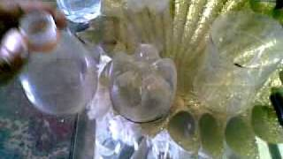 getlinkyoutube.com-الدرس الأول الزجاجات البلاستيك