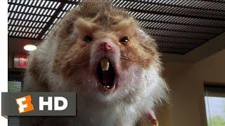 getlinkyoutube.com-Nutty Professor 2: The Klumps (8/9) Movie CLIP - Giant Hamster Attack (2000) HD