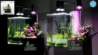 getlinkyoutube.com-【チャーム】デザイン水槽brioフルセット レイアウト動画を公開