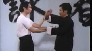 Wing Chun Basic Techniques part 4