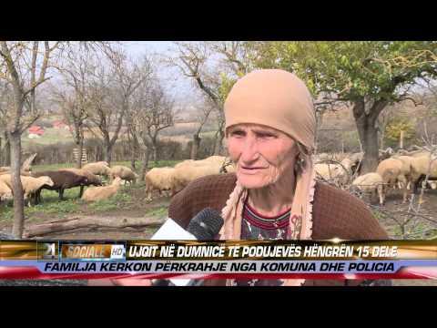 Ujqit ne Dumnice te Podujeves hengren 15 dele 07.11.2014