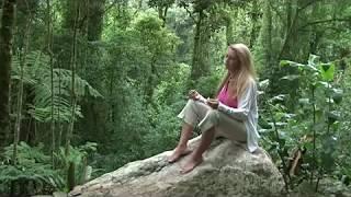 getlinkyoutube.com-Joao de Deus - Just a Man Trailer