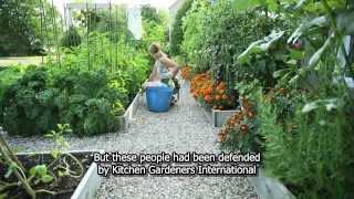 getlinkyoutube.com-Drummondville's front yard vegetable garden